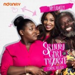A Show You Should Be Watching: Skinny Girl in Transit